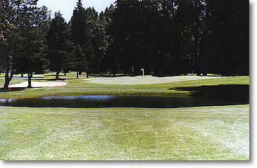 Lewis River #14: Your tee shot on hole #14 must be accurate in order for your approach shot to easily carry the water and land on the green. Use a long iron or five-wood off the tee and try to keep it to the right fairway. Water and trees line the left an