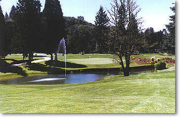 Hole #16 is a short par 4. The fairway is straight for about 200 yards and then narrows as it runs downhill to water that lines the entire front of the green. There is a dead tree to the right and a fountain and two trees to the left. The height of the fo
