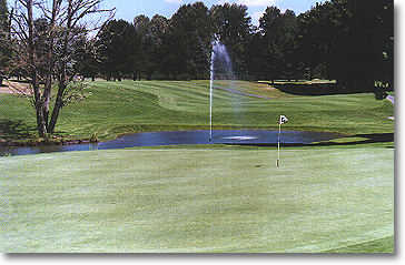 Hole #16: The green pitches sharply towards the water. This is a fun hole! (Photo from the back of the green.)