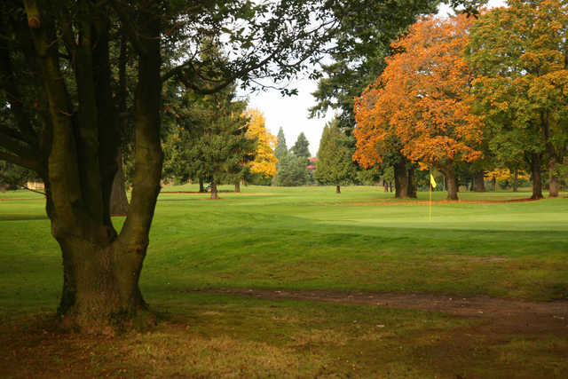 Autumn view of a green at Rose City Golf Course