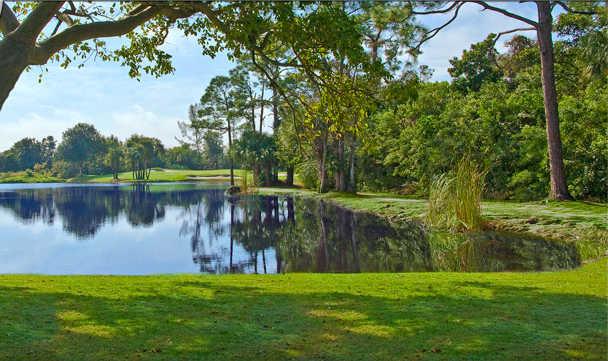 A view from Boca Rio Golf Club