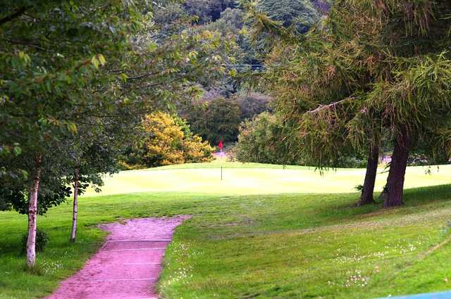 A view of a hole guarded by some trees at Beamish Park Golf Club
