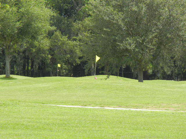 A view of some greens at Betmar Acres Golf Club