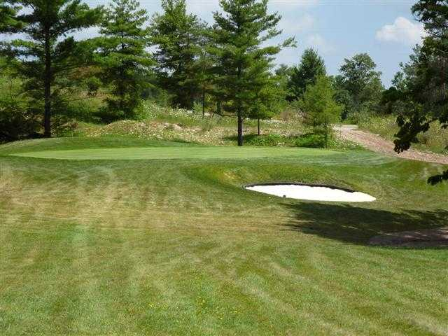 A view of a green guarded by some pines and a sand trap at Victoria Park Valley Golf Club