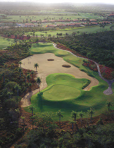 Aerial view of a green at Guavaberry Golf & Country Club