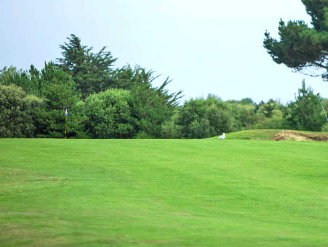 A view from a fairway at Les Ormes Golf & Leisure Club