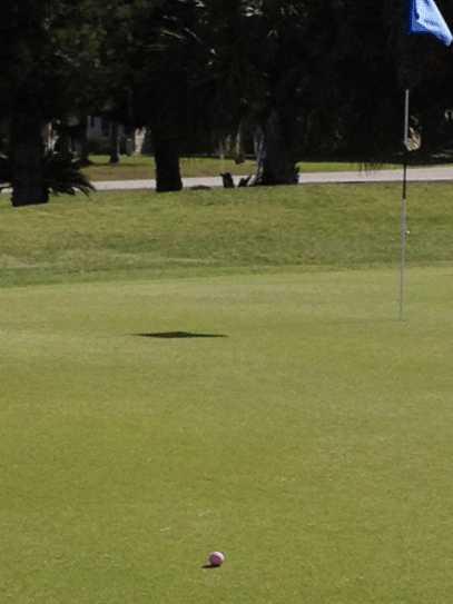 View of a green at Lehigh Resort Club