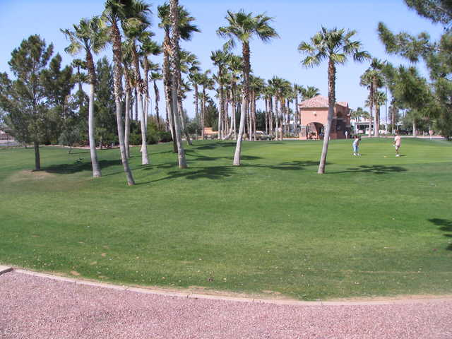 A view from Palm Creek Golf Club
