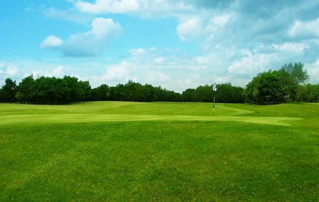 A view of a green at Silloge Park Golf Club