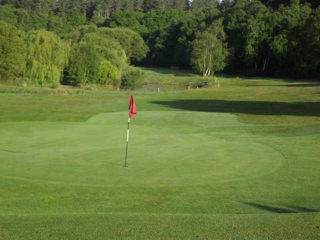 A view of a green at Wareham Golf Club
