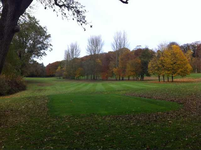 A fall view of a tee at Nuremore Golf Club