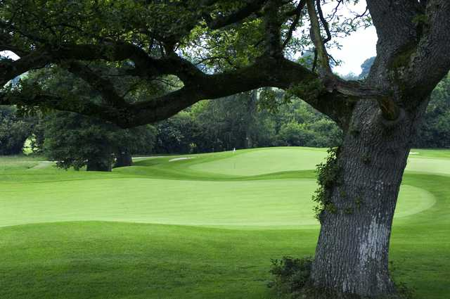 A view of a green at Rathsallagh Golf Club