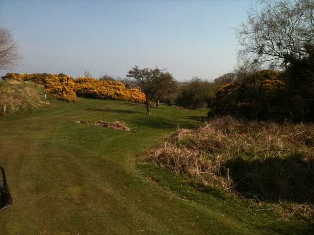 A view from Clandeboye Golf Club