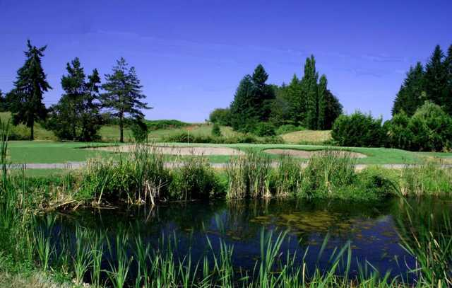 A view over a pond of a green surrounded by bunkers at Cedars on Salmon Creek