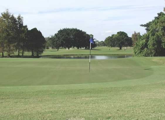 A view of a green from the Executive at Boca Raton Golf Course