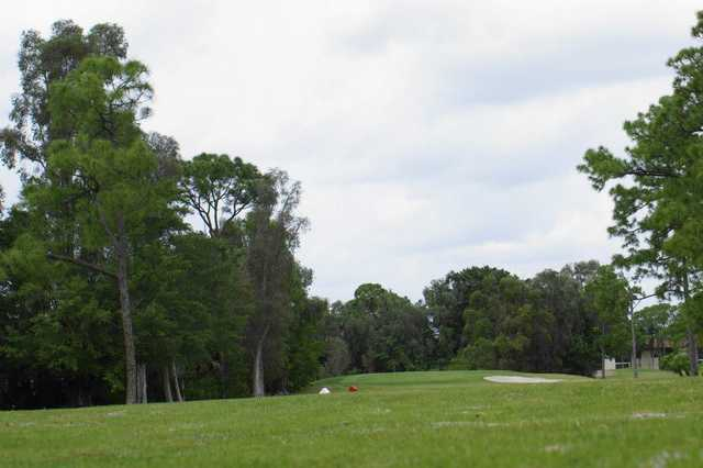 A view of tee #13 at Forest Oaks Golf Club