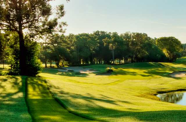 A sunny day view from Fox Squirrel Course at Innisbrook Resort & Golf Club