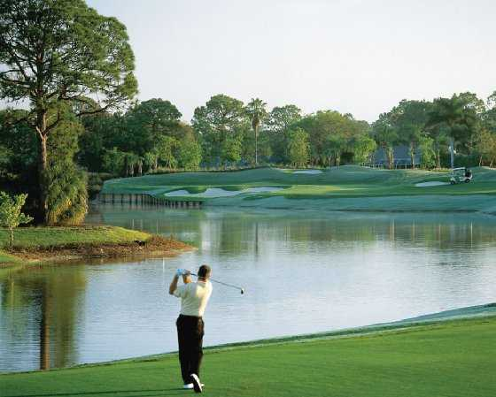 A view from Palmetto Pines Golf Course