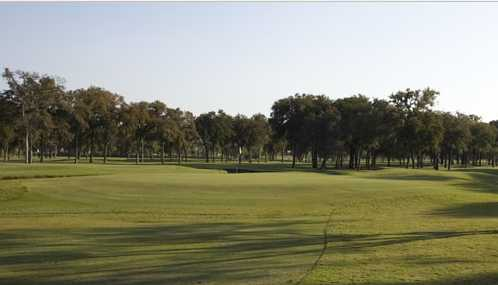 A view of from a fairway at Grand Oaks Golf Club