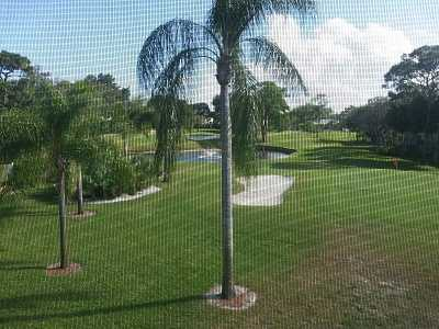 A view from Little Club (Little Club Condo)
