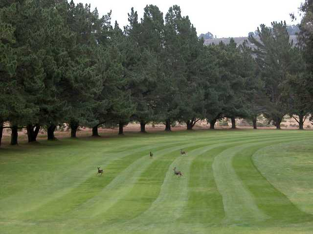 A view of a fairway at Marshallia Ranch Golf Course