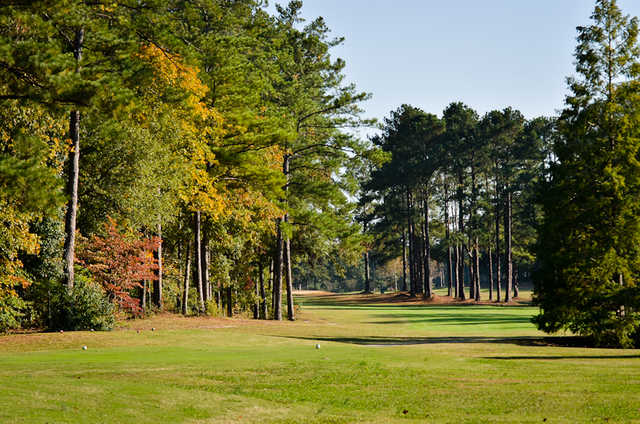 A view from a tee at Moree's Cheraw Country Club