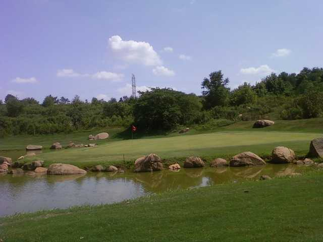 A view of a green at Harry L. Jones Sr. Golf Course