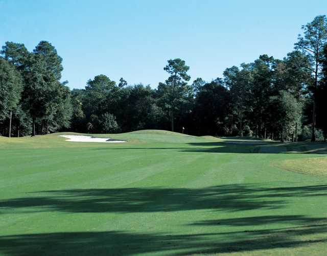 A view from fairway #7 at Magnolia from TimberCreek Golf Club
