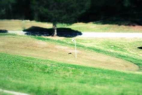 A view of a green at Deer Valley Links Golf Course