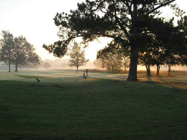 A view from Cottonwood Golf Club