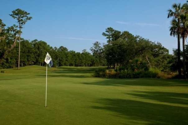 A sunny day view of the 13th green at RiverTowne Country Club