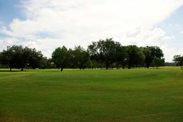 A view from Bartow Golf Course