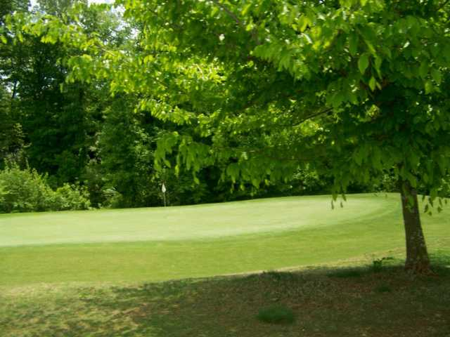 A view of a green at Williams Creek Golf Course