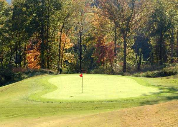 A view of the 7th green at Williams Creek Golf Course