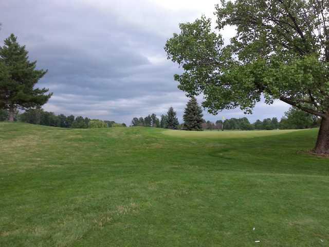 A view from Shamrock Golf Club (Swingbyswing)