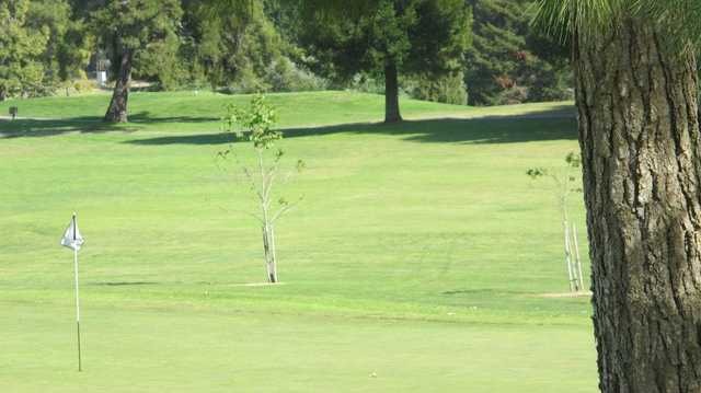 A view of a hole at Blacklake Golf Resort