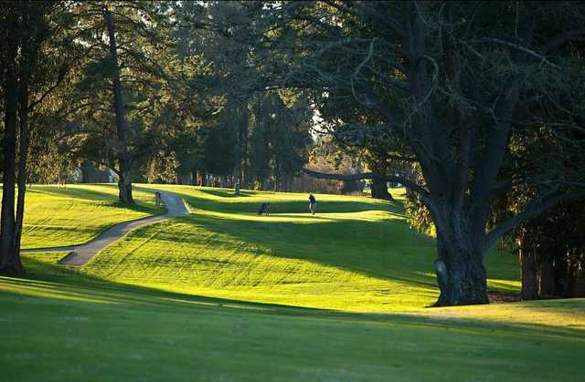 A view of a fairway at Blacklake Golf Resort