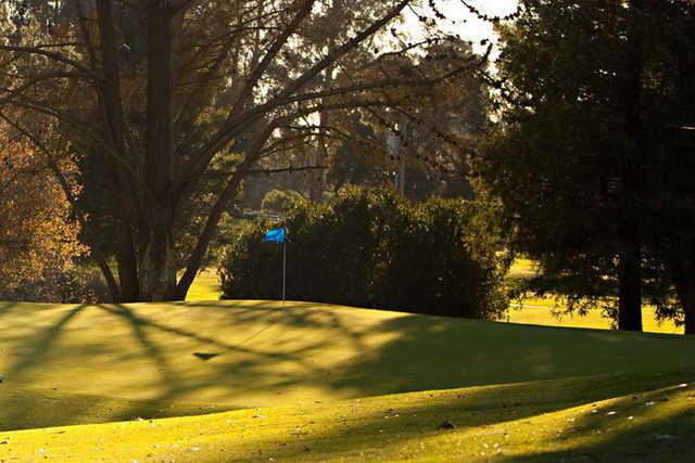 A fall view of a green at Blacklake Golf Resort