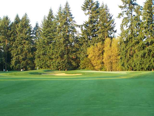 A sunny day view from a fairway at Chehalem Glenn Golf Club.