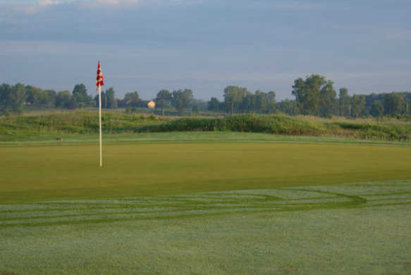 A view of a green from Hawk Meadows at Dama Farms Golf Club