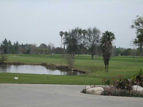 A view from Woodley Lakes Golf Course