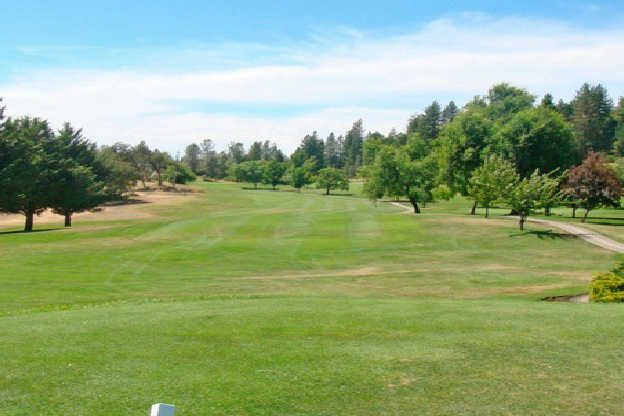 A view from a tee at Nevada County Country Club