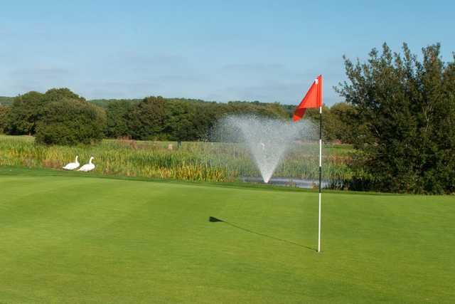 A view of a hole at Playgolf Bournemouth
