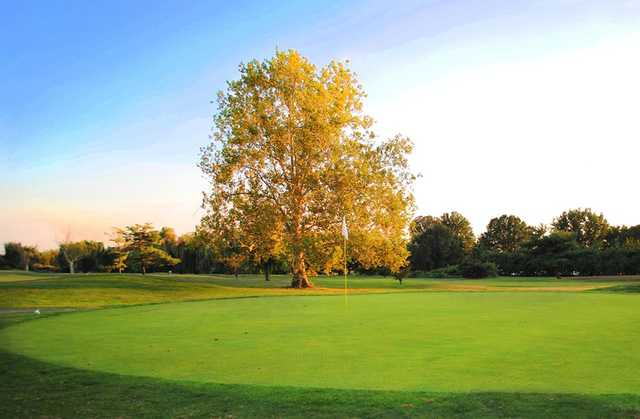 A view of a green at White from East Potomac Golf Course