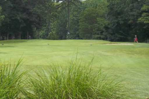 A view of a fairway from Pines At Clermont