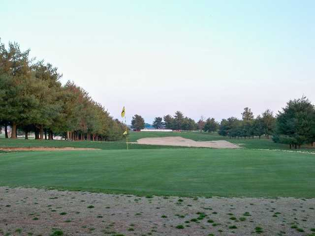A view of a hole surrounded by bunkers at The Pines from Lindsey Wilson