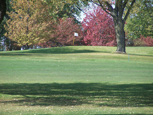 A view from a fairway at Bloomingdale Golf Course