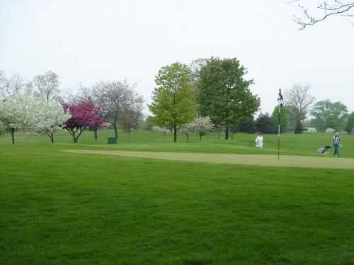 A view of a green at Shiloh Park Golf Course