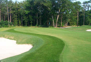 A view of the 5th hole at Aiken Golf Club