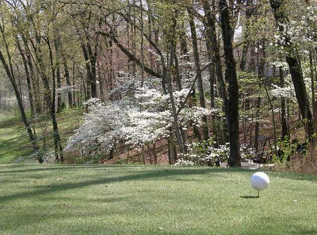 A spring view from a tee at Sycamore Creek Golf Club
